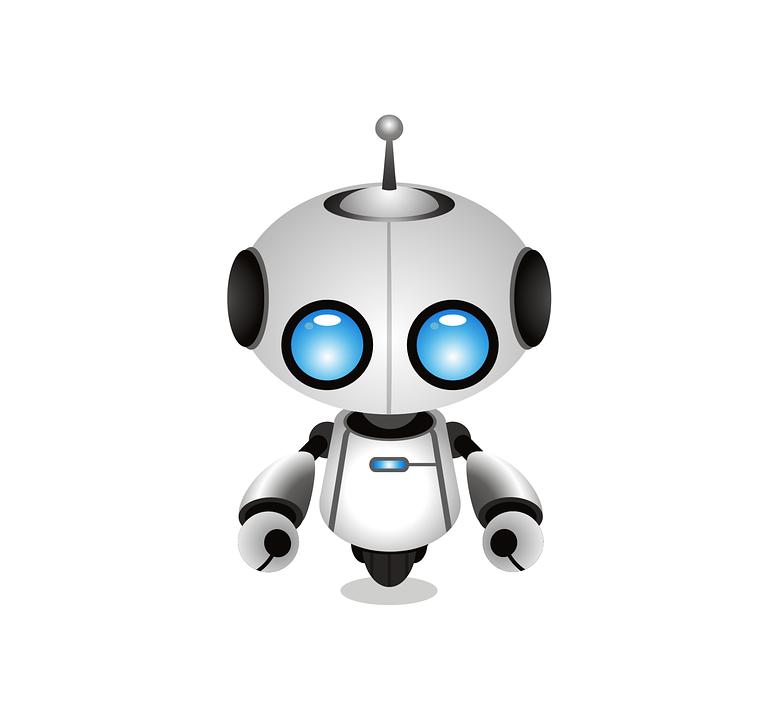 Robot R1